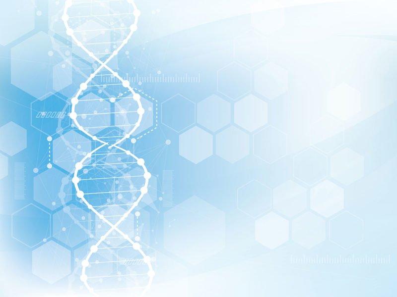 Process Mining mit Qlik®-DNA | Digitale Transformation in der Geschäftsprozessoptimierung