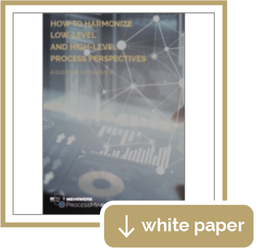 White Paper: How to harmonize low-level and high-level Process Perspectives